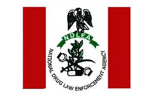 NDLEA Recruitment 2020/2021 Application Form Portal | www.ndlea.gov.ng